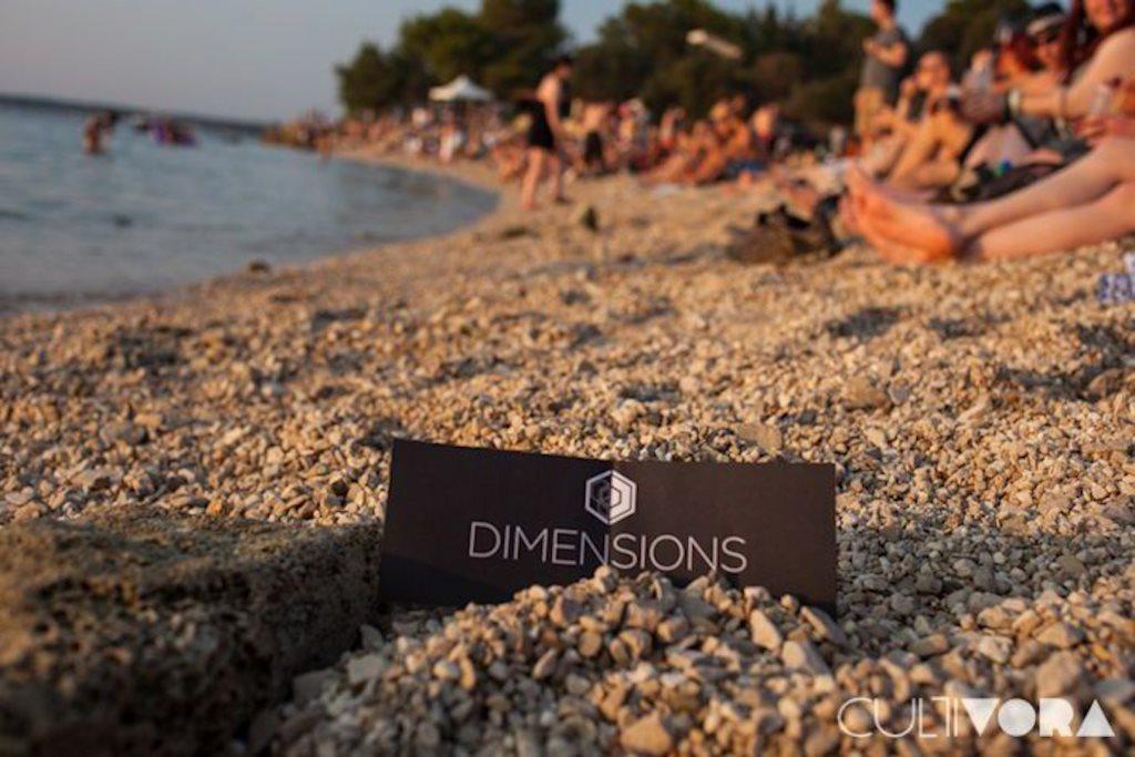 Dimensions Festival Launch Party - Flyer front