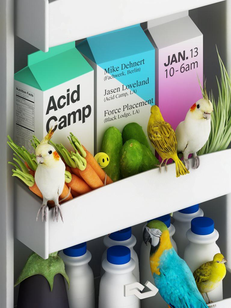 Acid Camp with Mike Dehnert, Jasen Loveland, Force Placement - Flyer front