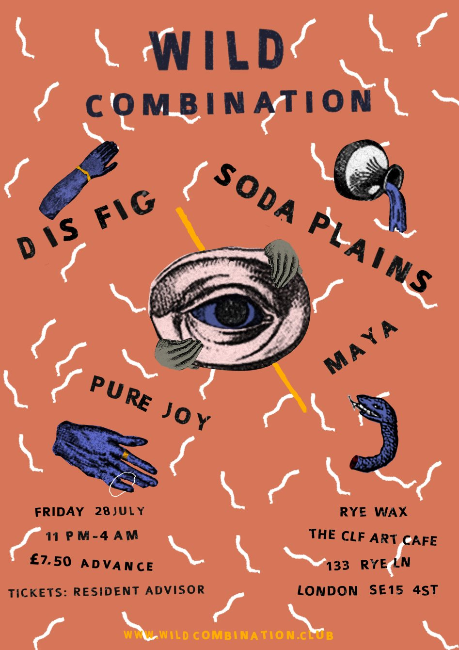 Wild Combination with Dis Fig and Soda Plains - Flyer front