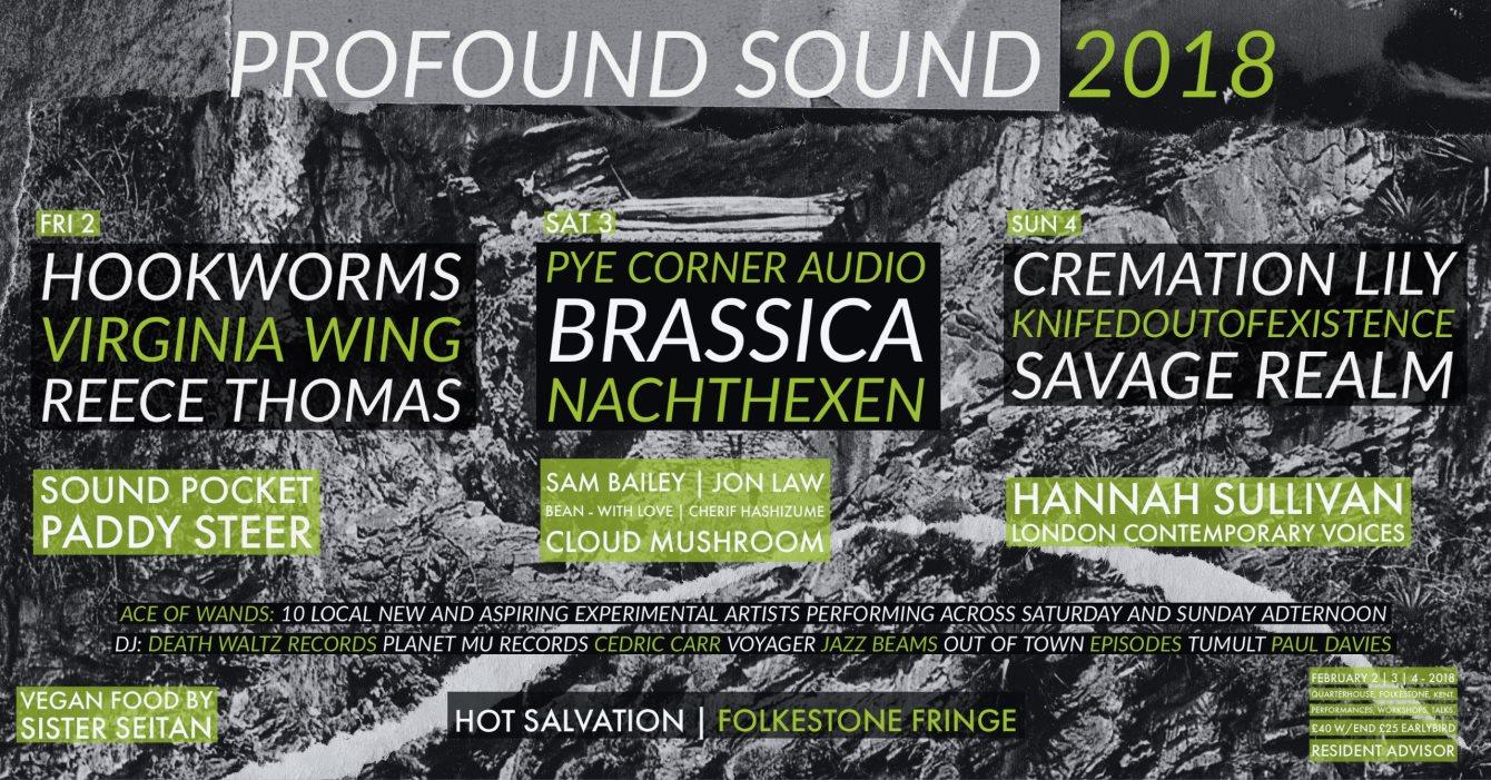 Profound Sound 2018 - Flyer front