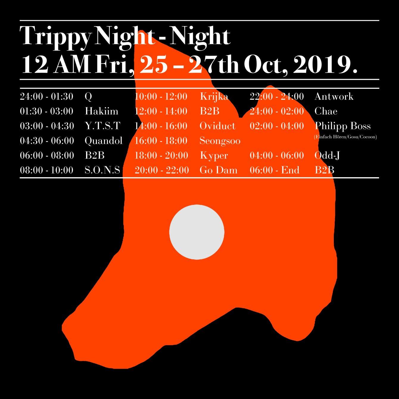 ▒ Trippy Night-Night▒ - Flyer back