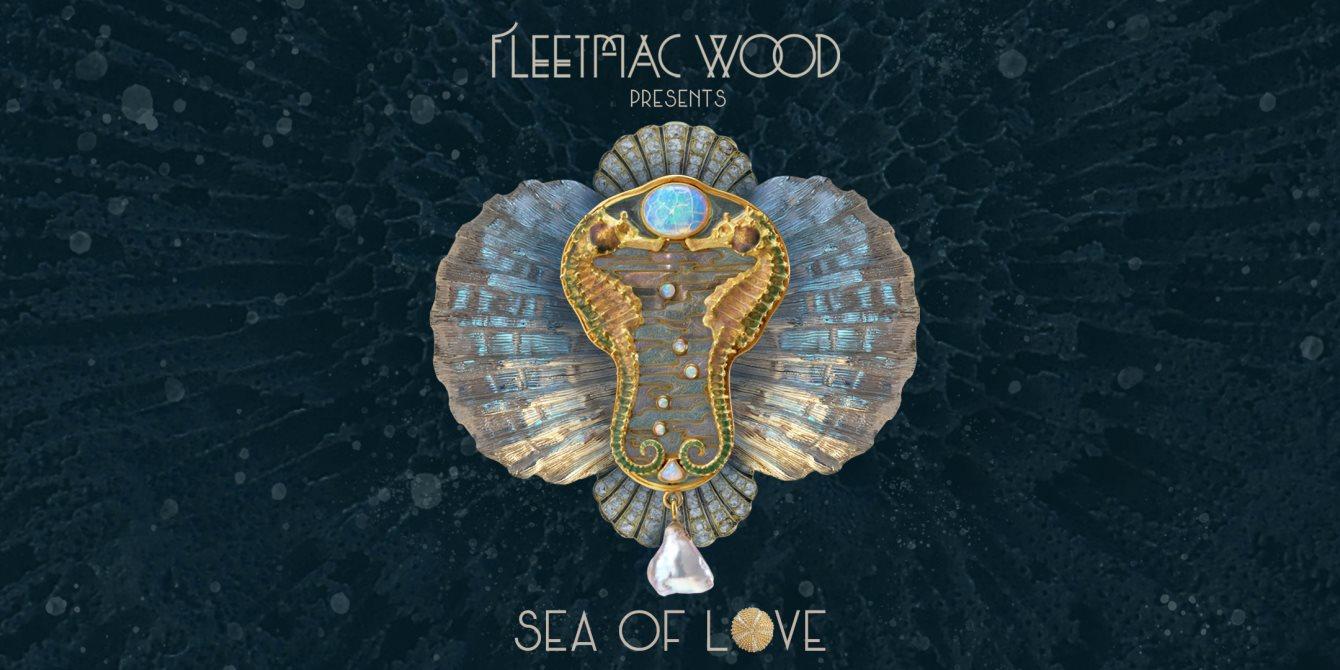 Fleetmac Wood presents Sea of Love Disco - Dublin - Flyer front