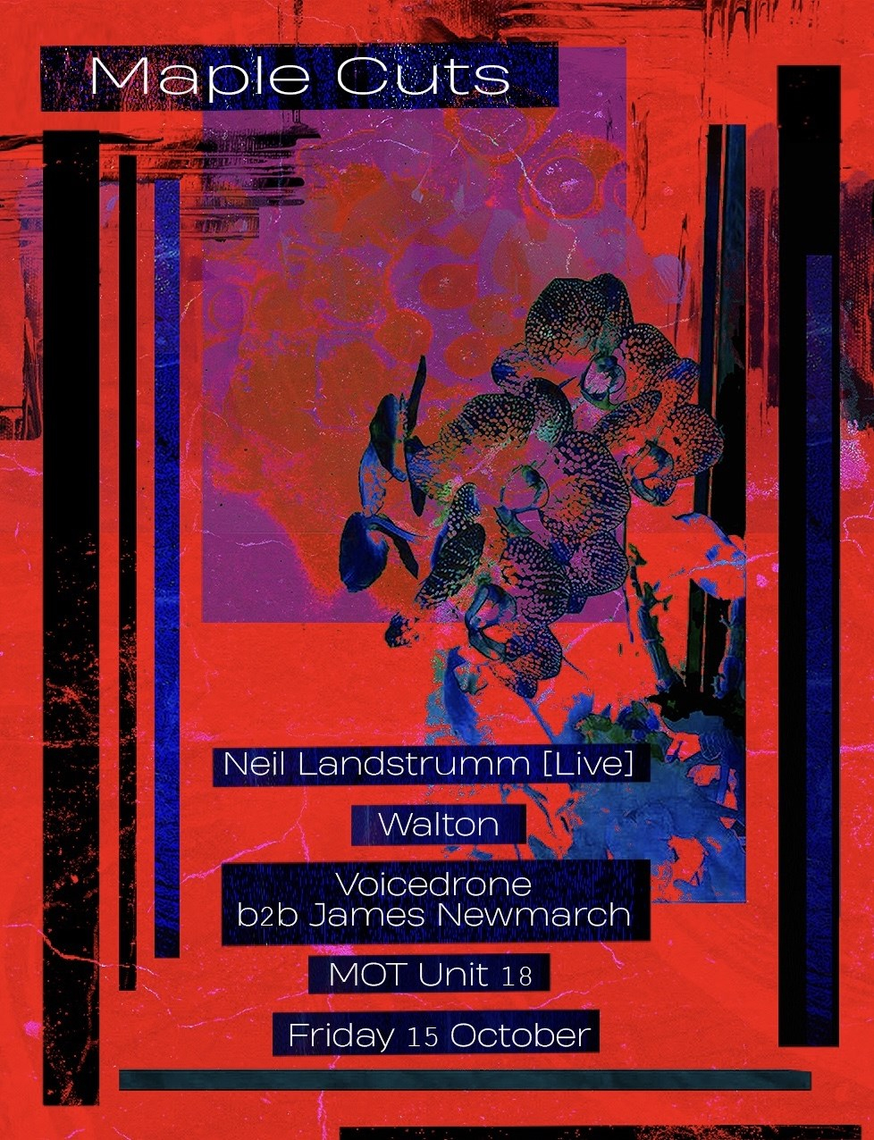 Maple Cuts with Neil Landstrumm, Walton, Voicedrone b2b James Newmarch - Flyer front