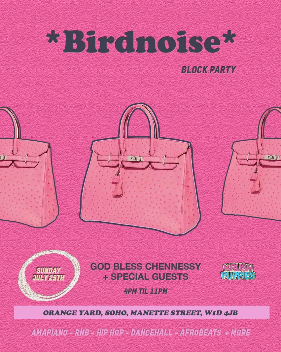 *Birdnoise* Block Party - Flyer front