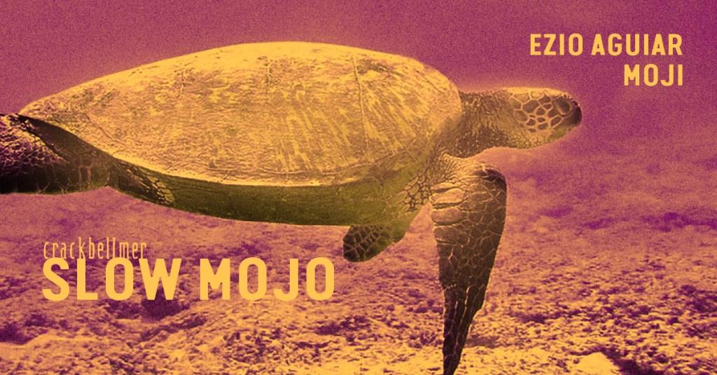 Slowmojo - Flyer front