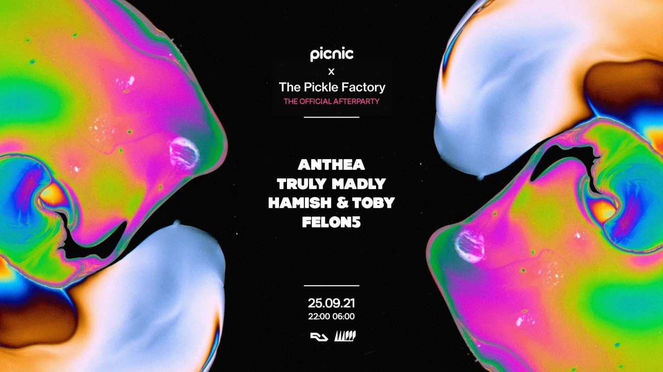 Picnic x The Pickle Factory - Official Waterworks Afterparty - Flyer back