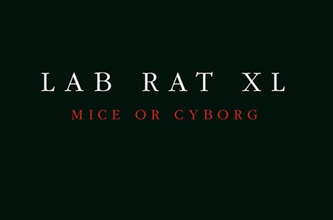 The final Drexciyan 'storm,' Lab Rat XL album Mice Or Cyborg, to be repressed by Clone image
