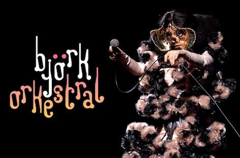 Björk to perform three shows at Reykjavík's Harpa Hall this August image