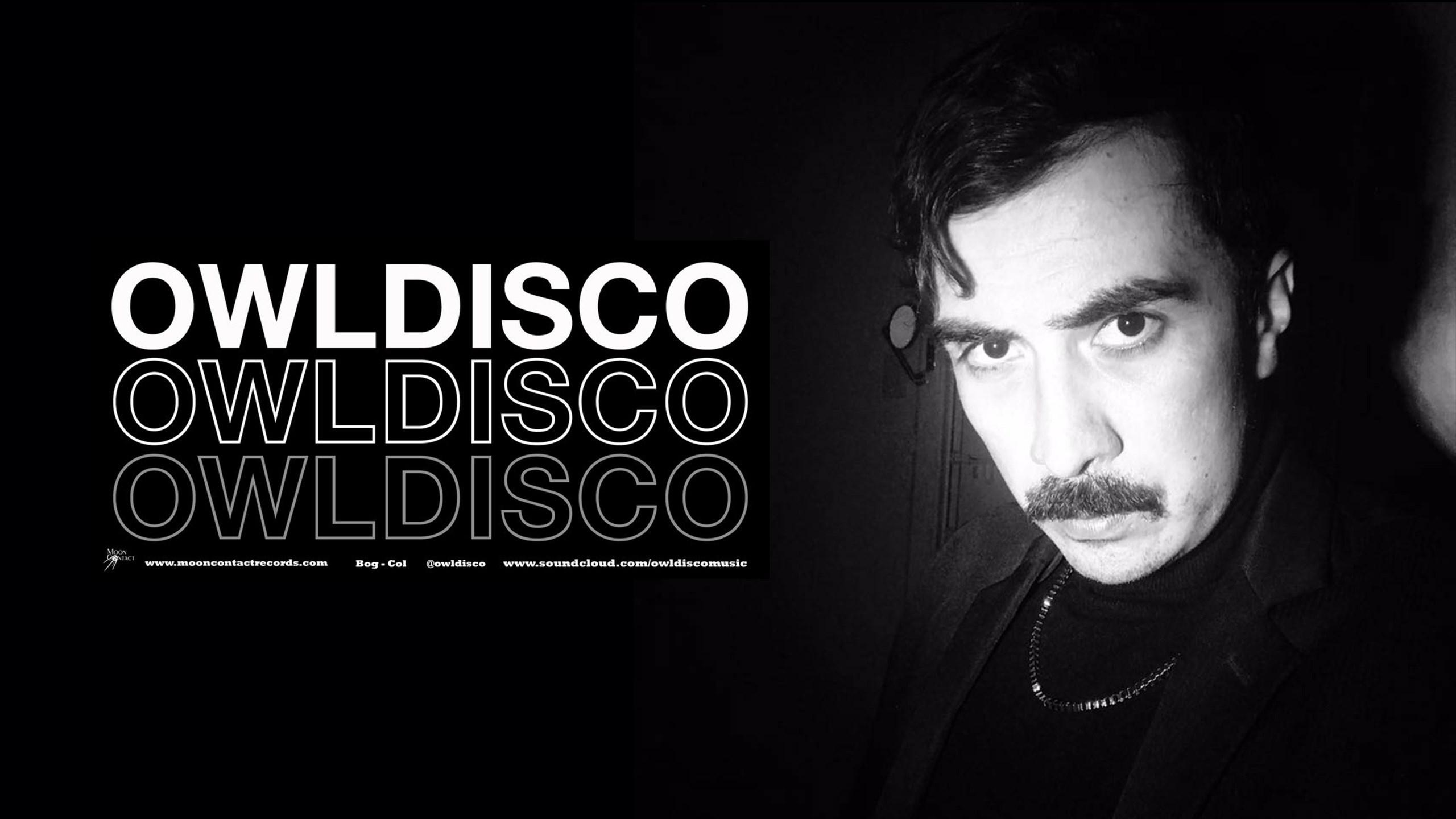 Cover image for Owldisco
