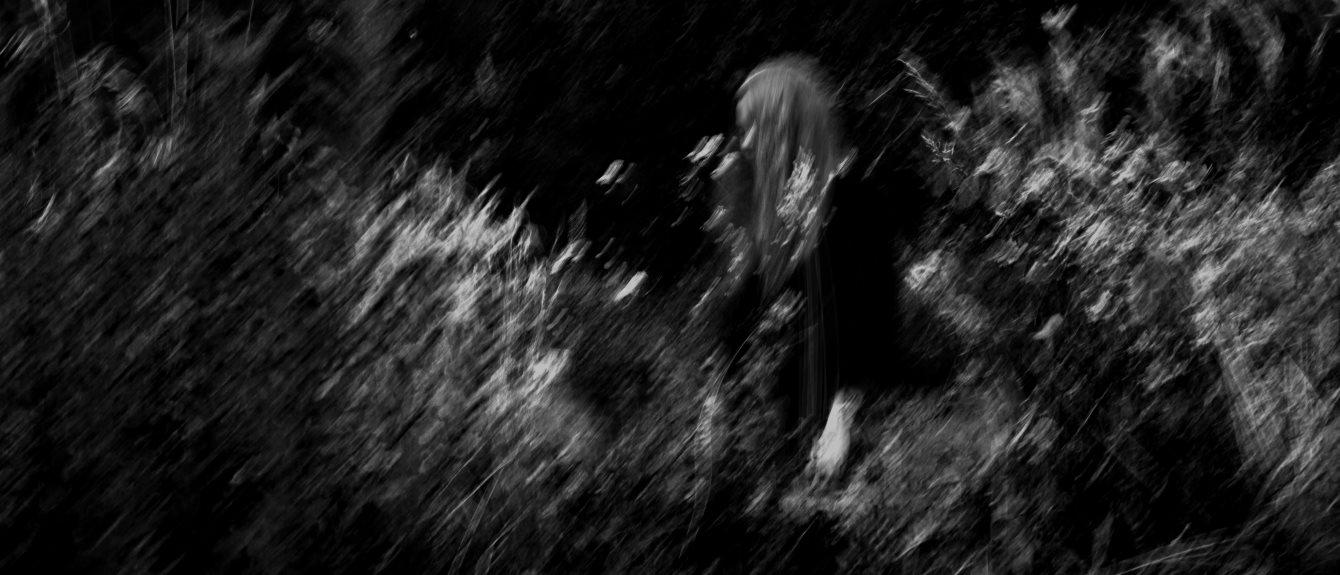 Cover image for Paula Koski