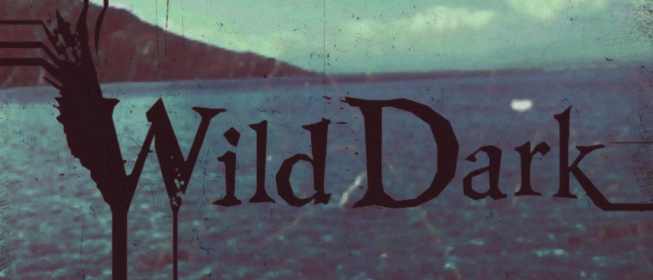 Cover image for Wild Dark